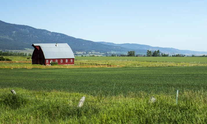Blue skies, red barns, green fields...summer in Oregon!