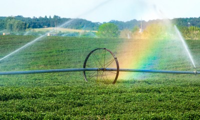 Rainbow in the mist of a farm field