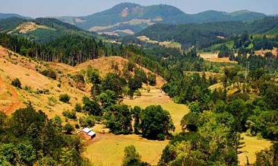 Farm and forest land in Douglas County